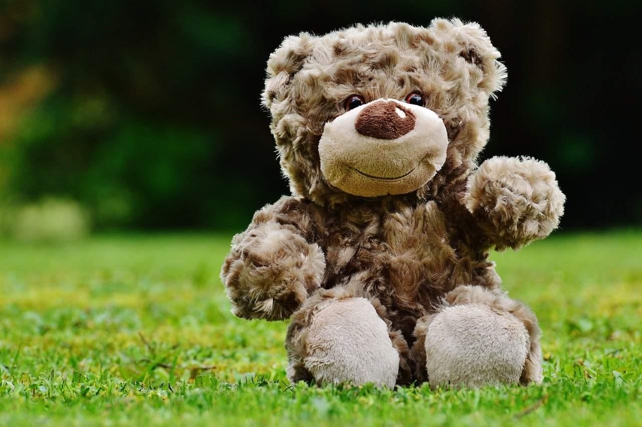 teddy-1338895_1280