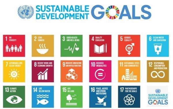 giornata-mondiale-della-disabilita-2016-17-obiettivi